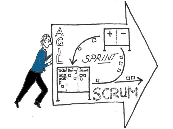 Agilität, agiles Management und agile Organisation entwickeln